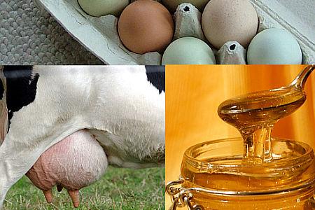 vejce-mleko-med