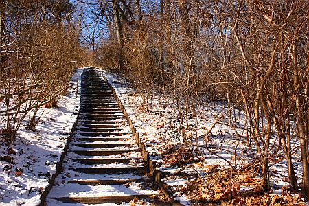 chodnik zima