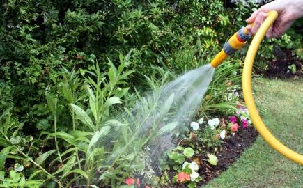 zalevani zahrady
